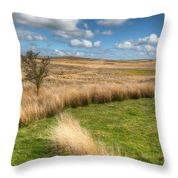 Denbigh Moors Throw Pillow by Adrian Evans