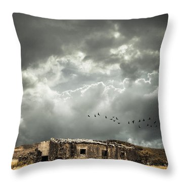Derelict Rural Building Throw Pillow by Amanda Elwell