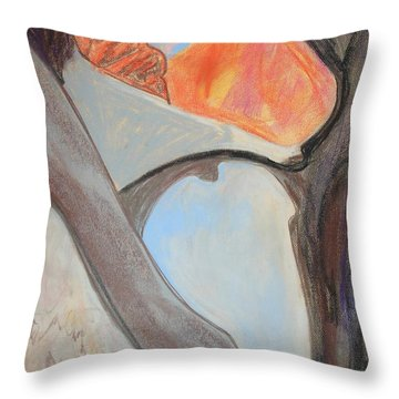 Desert Canyon Pool In The Negev Throw Pillow by Esther Newman-Cohen