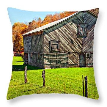 Designer Barn Throw Pillow by Steve Harrington