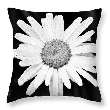 Dew Drop Daisy Throw Pillow by Adam Romanowicz