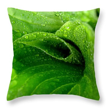 Dew Drops Throw Pillow by Lisa Phillips