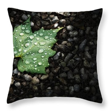 Dew On Leaf Throw Pillow by Scott Norris