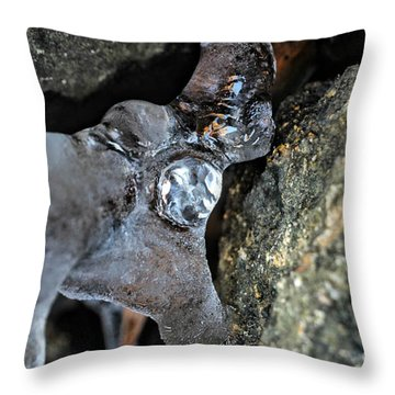 Diamond In The Ruff Ice Throw Pillow by Peggy  Franz