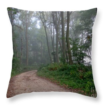 Dirt Path In Forest Woods With Mist Throw Pillow by Olivier Le Queinec