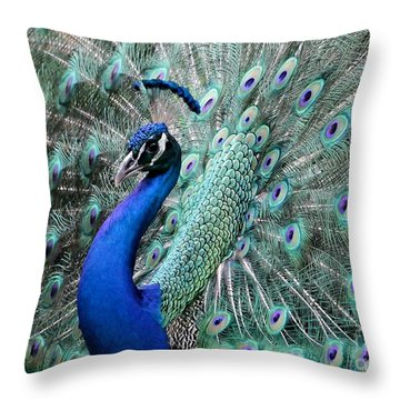 Do You Like Me Now Throw Pillow by Sabrina L Ryan