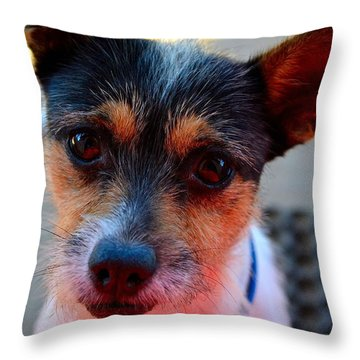 Dog 2   Throw Pillow by Naomi Burgess