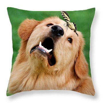 Dog And Butterfly Throw Pillow by Christina Rollo
