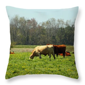 Doin What Comes Naturally Throw Pillow by Suzanne Gaff