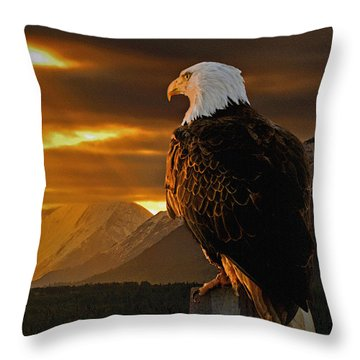 Domain Throw Pillow by Ron Day