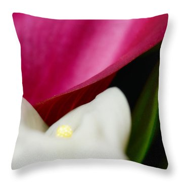 Dont Go To Strangers Throw Pillow by Floyd Menezes