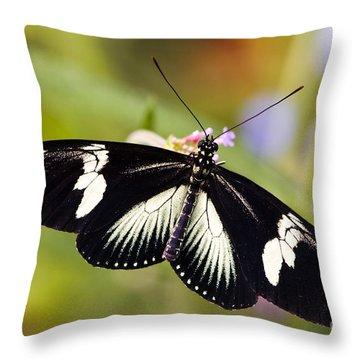 Doris Longwing Butterfly Throw Pillow by Oscar Gutierrez