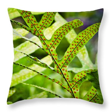 Dotty Throw Pillow by Christi Kraft