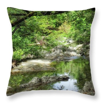 Down By The Creek Throw Pillow by Donna Blackhall