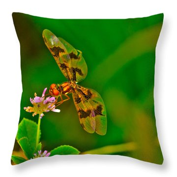Dragonfly And Flower Throw Pillow by Lorri Crossno