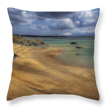 Dream Beach Throw Pillow by Ian Mitchell