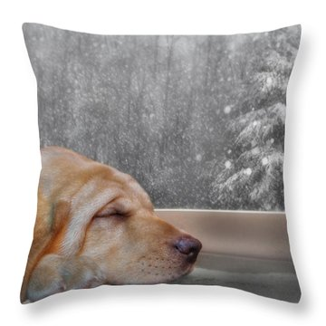 Dreamin' Of A White Christmas 2 Throw Pillow by Lori Deiter