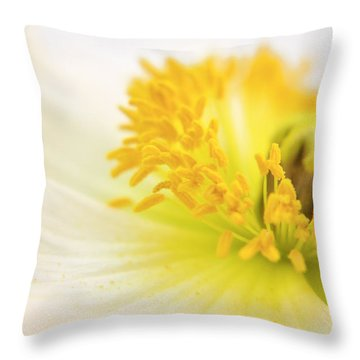 Dreaming Poppy Throw Pillow by Angela Doelling AD DESIGN Photo and PhotoArt