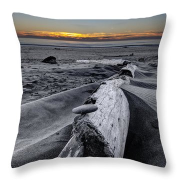 Driftwood In The Sand Throw Pillow by Debra and Dave Vanderlaan