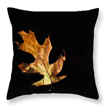 Dry On Water Throw Pillow by Karol Livote