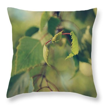 Each Sight Throw Pillow by Laurie Search