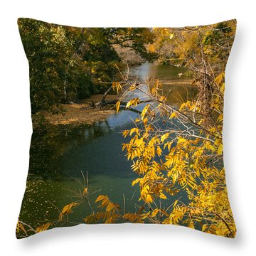 Early Fall On The Navasota Throw Pillow by Robert Frederick