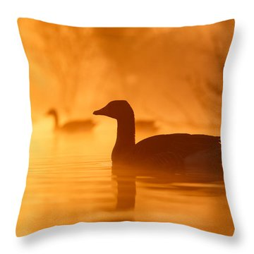 Early Morning Mood Throw Pillow by Roeselien Raimond
