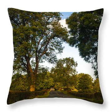 Early Morning On The Way To Trossachs. Scotland Throw Pillow by Jenny Rainbow