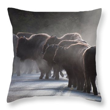 Early Morning Road Bison Throw Pillow by Bruce Gourley
