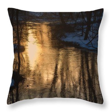 Early Winter Morning Throw Pillow by Karol Livote
