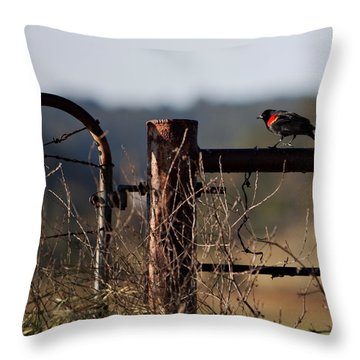 Eary Morning Blackbird Throw Pillow by Art Block Collections