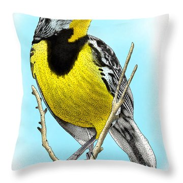 Eastern Meadowlark Throw Pillow by Roger Hall
