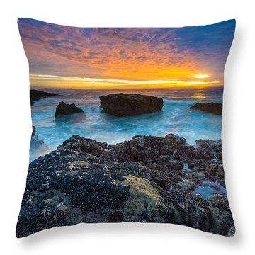 Edge Of America II Throw Pillow by Robert Bynum
