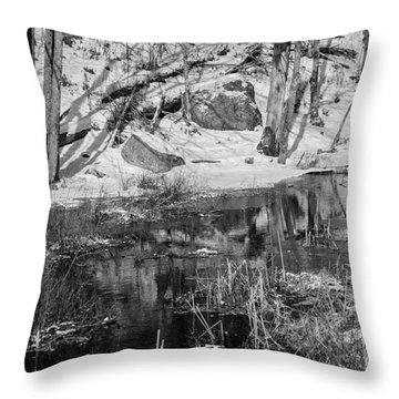 Edge Of The Marsh Throw Pillow by Alana Ranney