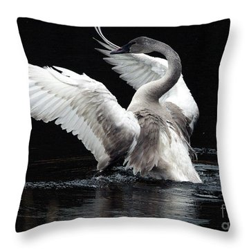 Elegance In Motion 2 Throw Pillow by Sharon Talson