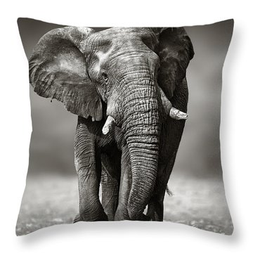 Elephant Approach From The Front Throw Pillow by Johan Swanepoel