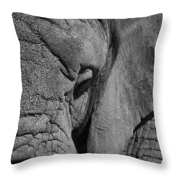 Elephant Bw Throw Pillow by Ernie Echols