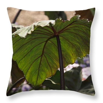 Elephant Ear Throw Pillow by James Peterson