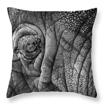 Elephant Eye Throw Pillow by Sebastian Musial