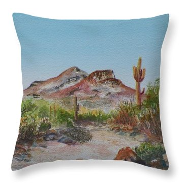Elephant Mountain Throw Pillow by Michael McGrath