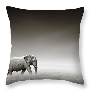 Elephant With Zebra Throw Pillow by Johan Swanepoel