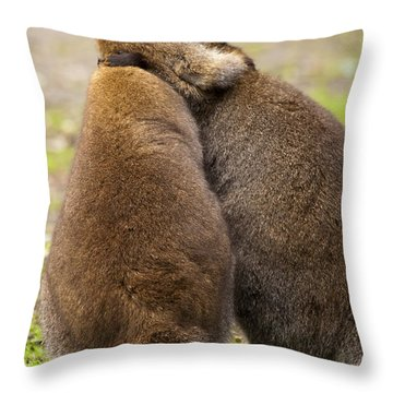 Embrace Throw Pillow by Mike  Dawson