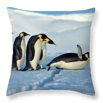 Emperor Penguin Aptenodytes Forsteri Throw Pillow by Hans Reinhard