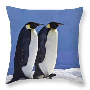 Emperor Penguin Couple Throw Pillow by Jean-Louis Klein and Marie-Luce Hubert