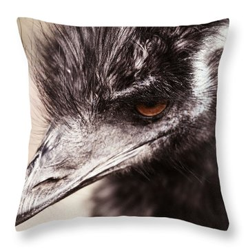 Emu Closeup Throw Pillow by Karol Livote