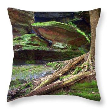 Enchanting Throw Pillow by J Allen