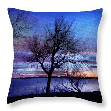 End Of Day Throw Pillow by Betty LaRue