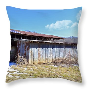 End Of Winter Throw Pillow by Susan Leggett