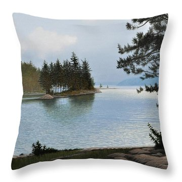 Equanimity Throw Pillow by Kenneth M  Kirsch