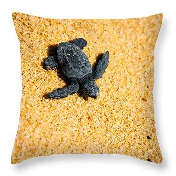 Escape Throw Pillow by Sebastian Musial